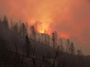 Fire_SierraNationalForest_CA_USFS_1